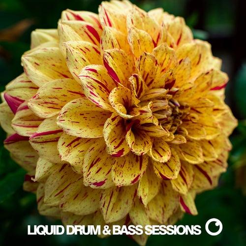 Liquid Drum & Bass Sessions Vol 11 de Dreazz