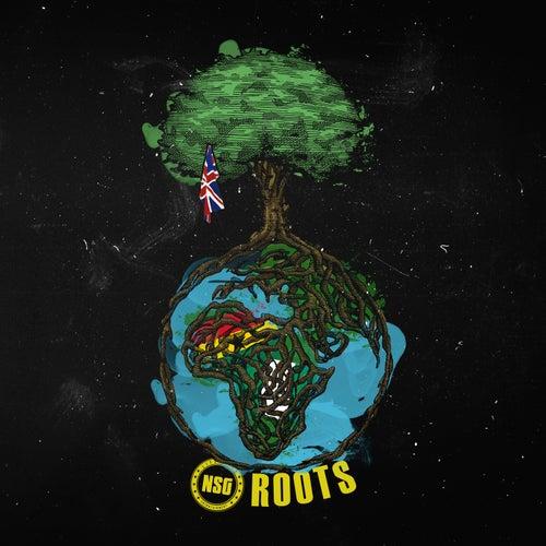 Roots von Nsg