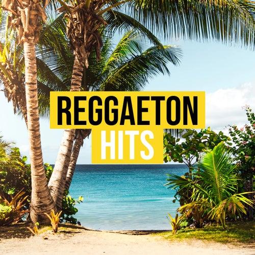 Reggaeton Hits van Various Artists
