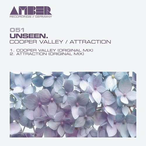 Cooper Valley / Attraction by Unseen