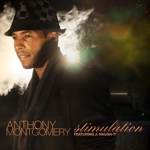 Stimulation - Single by Anthony Montgomery