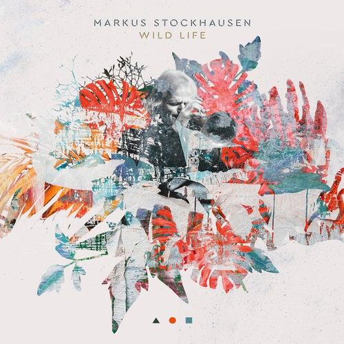 Wild Life by Markus Stockhausen