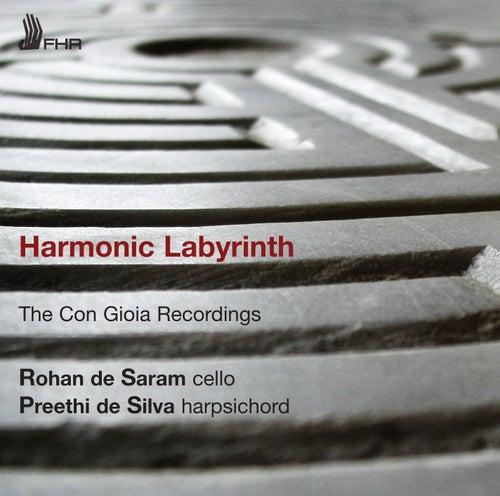Harmonic Labyrinth by Rohan De Saram