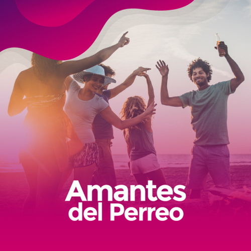 Amantes del perreo by Various Artists