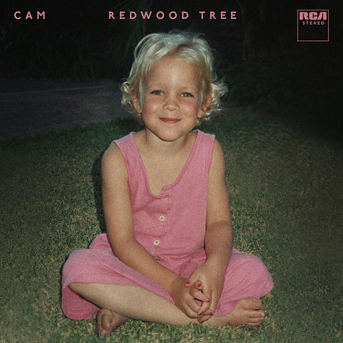 Redwood Tree de Cam
