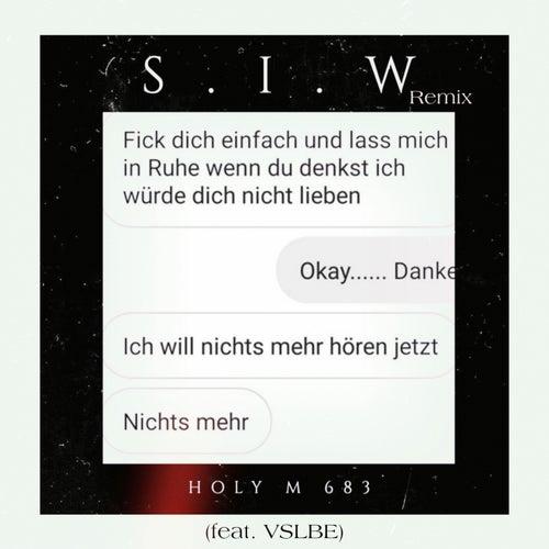 S.I.W (Remix) von Vslbe