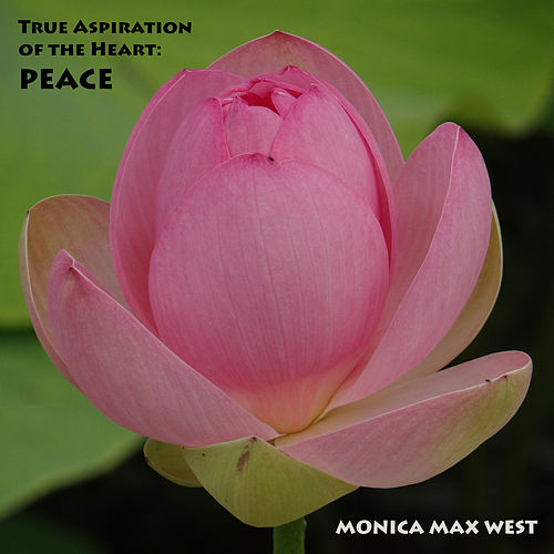 True Aspiration of the Heart: Peace by Monica Max West