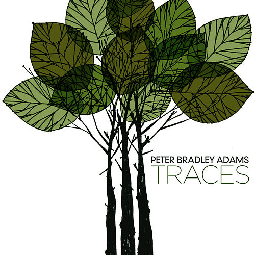 Traces de Peter Bradley Adams
