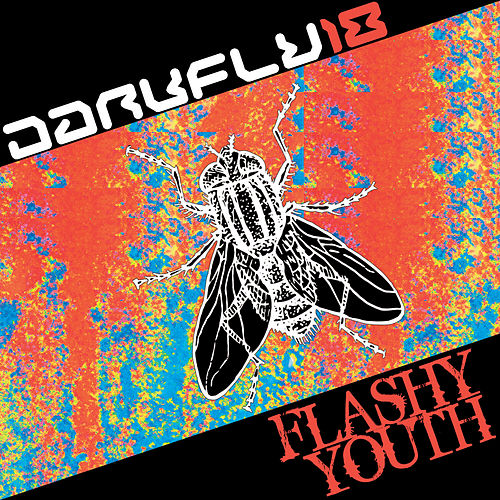 Flashy Youth by Chris Jones