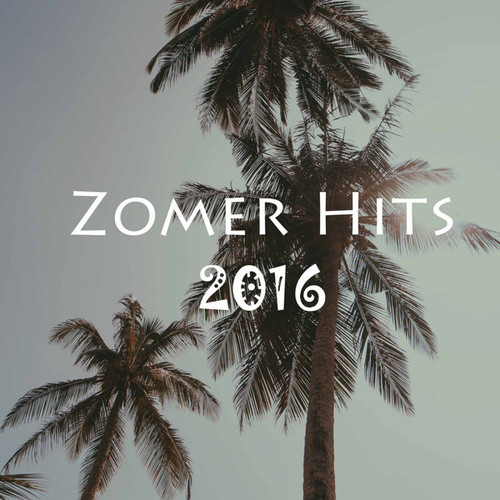 Zomer Hits 2016 de Various Artists