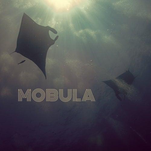 Mobula by Soulseize