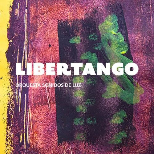 Libertango by Orquesta Sonidos de Luz