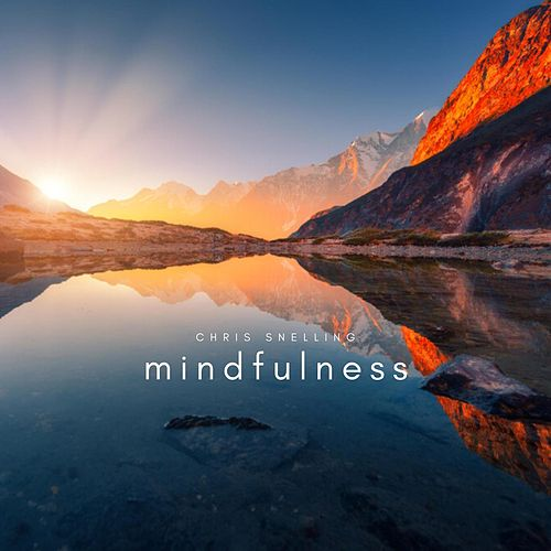 Mindfulness de Chris Snelling
