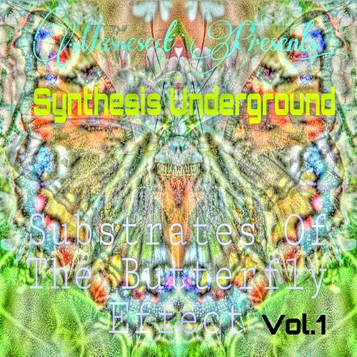 Substrates of the Butterfly Effect, Vol. 1 by Synthesis Underground