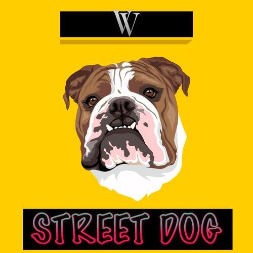 Street Dog by Vincent Viktor