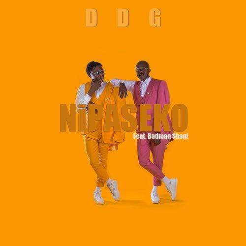 Nipaseko (feat. Badman Shapi) de DDG