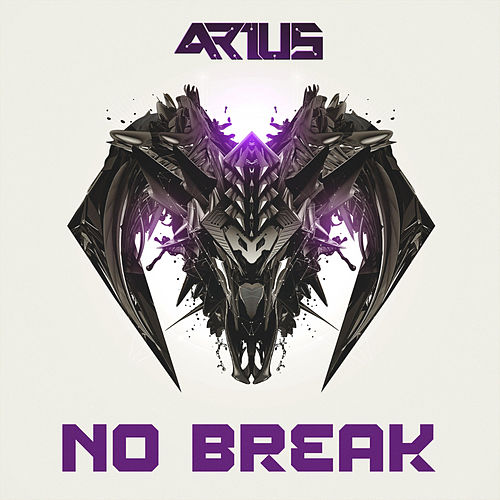 No Break von Arius