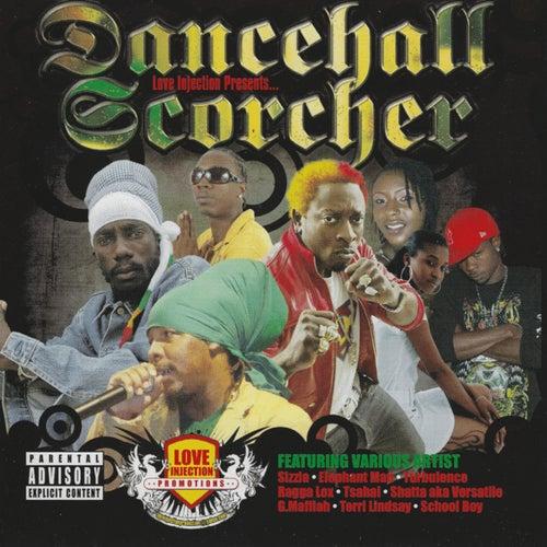 Dancehall Scorcher by Various Artists