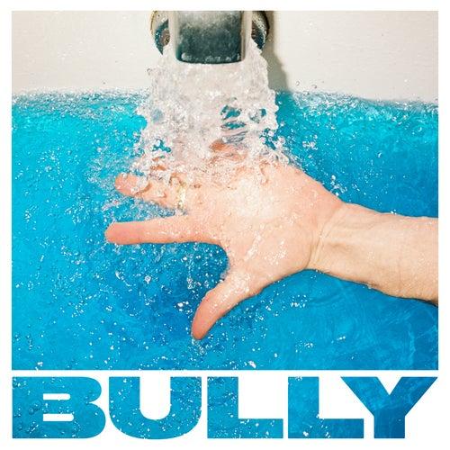 Where to Start de Bully