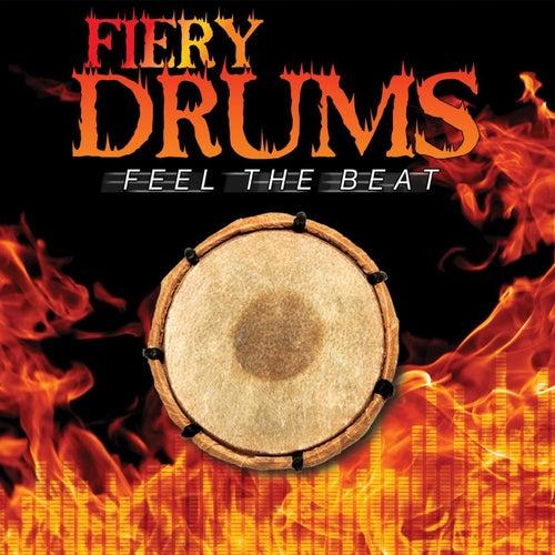 Fiery Drums de Ricky Kej