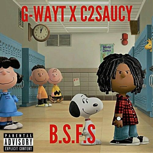 Bsfs de G-Wayt