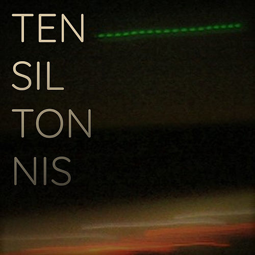The Fens (Disco Dream Remix) by Tensil Tonnis