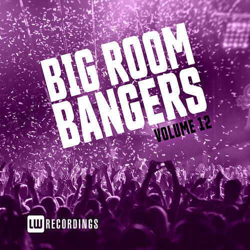 Big Room Bangers, Vol. 12 von Various Artists