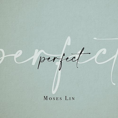 Perfect von Moses Lin