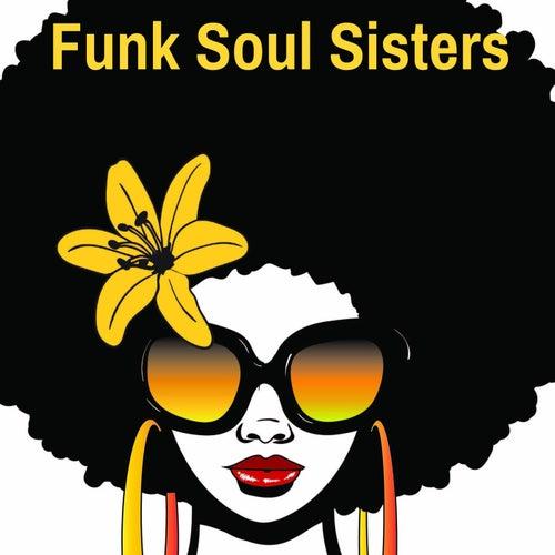 Funk Soul Sisters de Various Artists