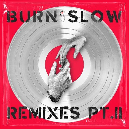 BURN SLOW REMIXES PT. II von Chris Liebing
