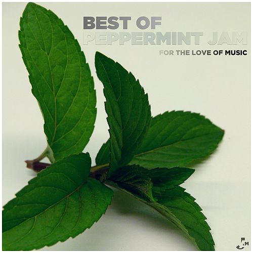 Best of Peppermint Jam - For the Love of Music von Various Artists