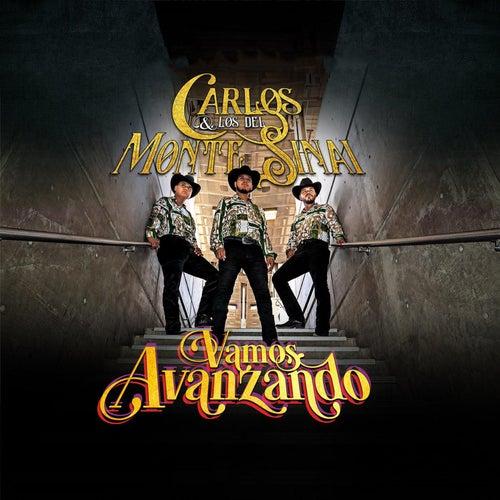 Vamos Avanzando de Carlos Y Los Del Monte Sinai