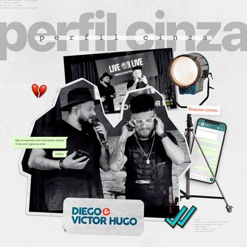 Perfil Cinza von Diego & Victor Hugo