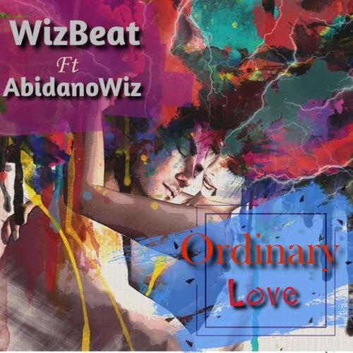 Ordinary Love von WizBeat