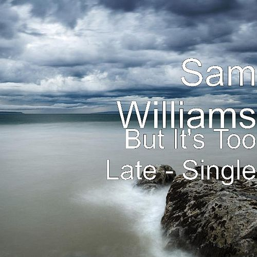But It's Too Late - Single by Sam Williams