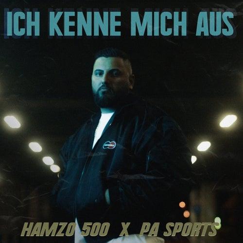 ICH KENNE MICH AUS von Hamzo 500