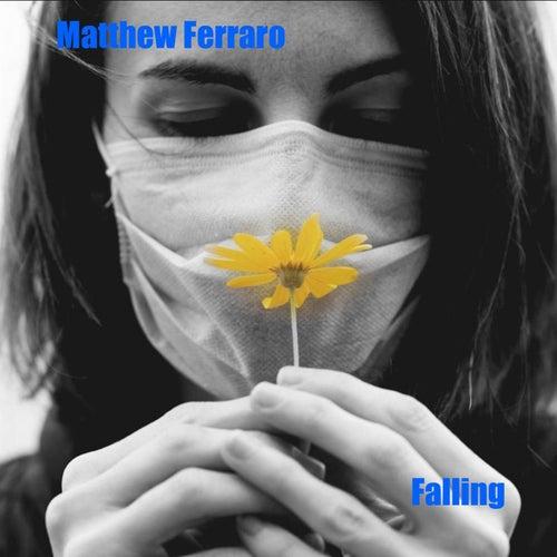 Falling by Matthew Ferraro