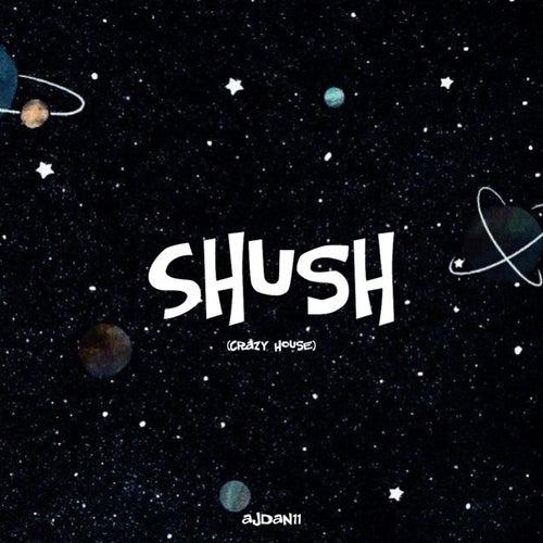 Shush (Crazy House) by AJdan11