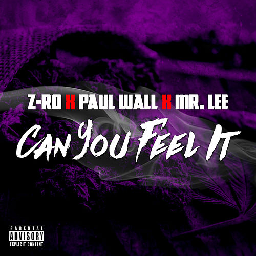 Can You Feel It by Z-Ro