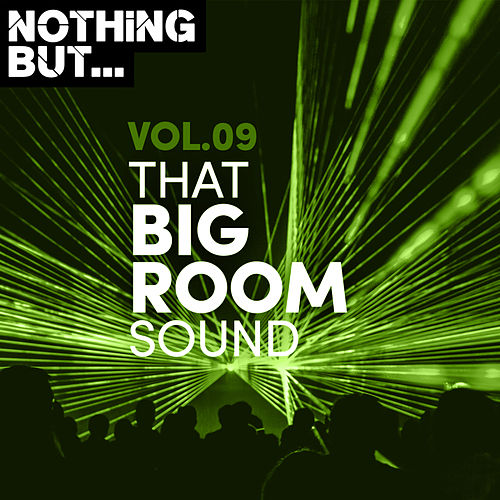 Nothing But... That Big Room Sound, Vol. 09 by Various Artists