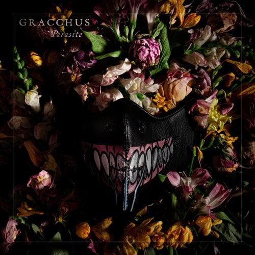 Parasite von Gracchus