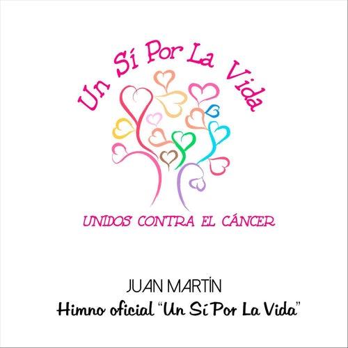 Un Sí por la Vida by Juan Martín