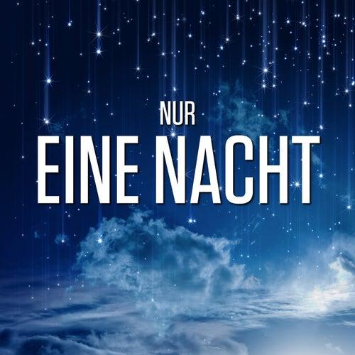 Nur eine Nacht de Various Artists