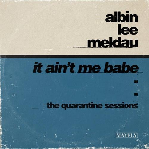 It Ain't Me Babe (The Quarantine Sessions) von Albin Lee Meldau