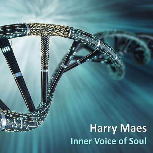 Inner Voice of Soul by Harry Maes