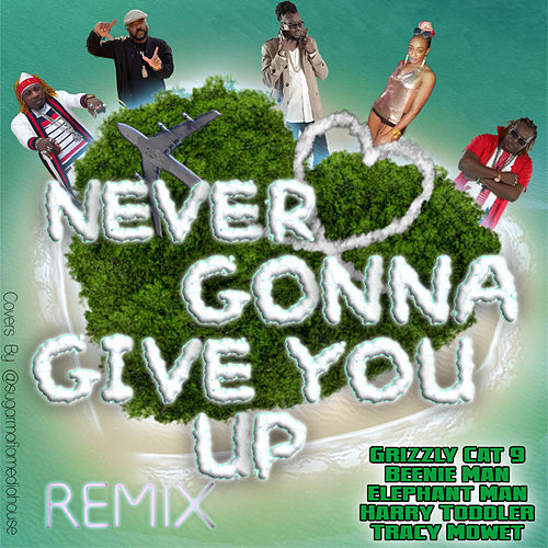 Never Gonna Give You up (Remix) by Grizzly Cat 9