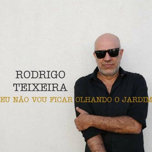 Eu Não Vou Ficar Olhando o Jardim de Rodrigo Teixeira
