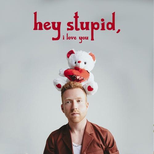 Hey Stupid, I Love You de JP Saxe