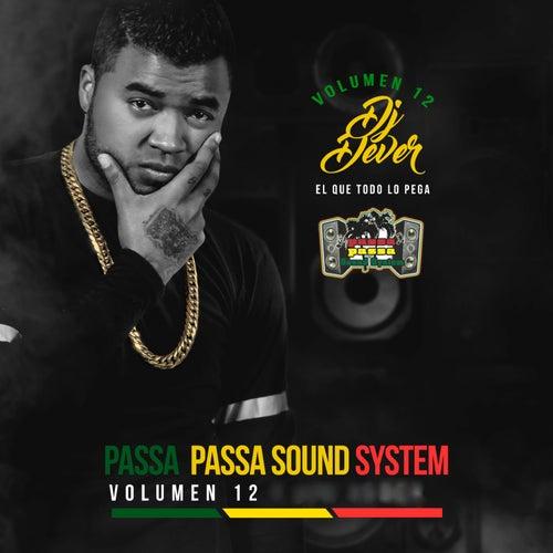 Passa Passa Sound System, Vol. 12 (El Que Todo lo Pega) by DJ Dever
