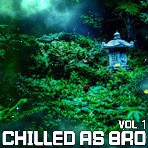 Chilled As Bro, Vol. 1 by Bertoni